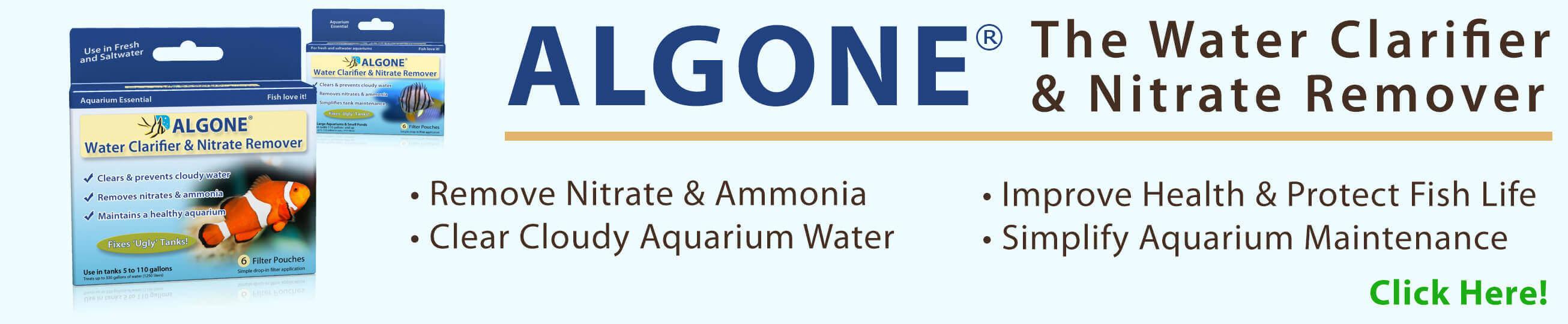 Algone aquarium water clarifier