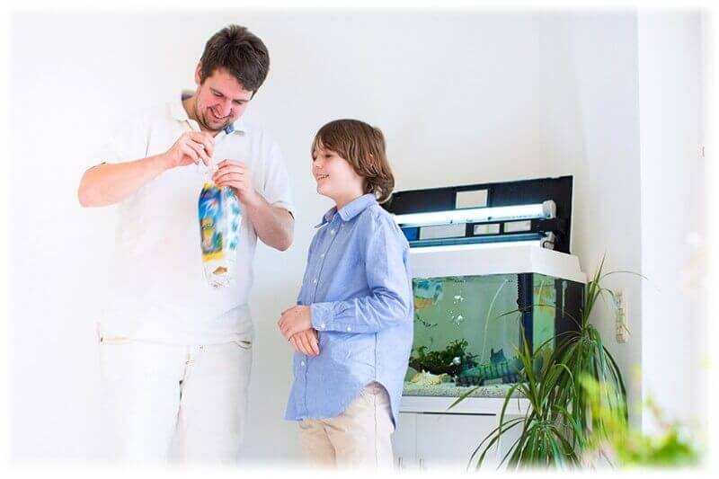 Father and son with a new aquarium fish