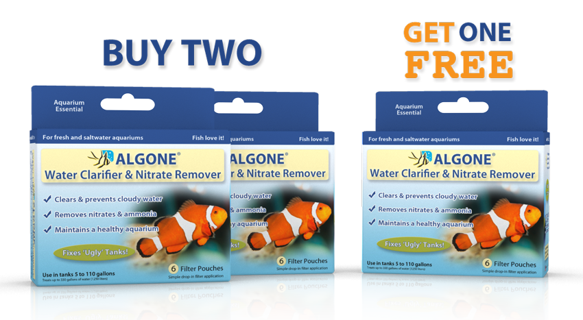 Buy 2 get 1 Free Algone Sale